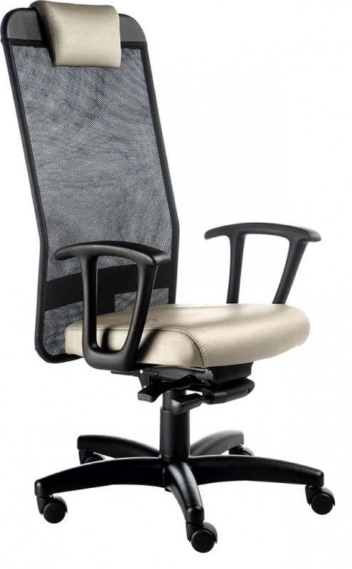 Cadeiras Office Presidente Vila Caborne - Cadeira Presidente 150kg