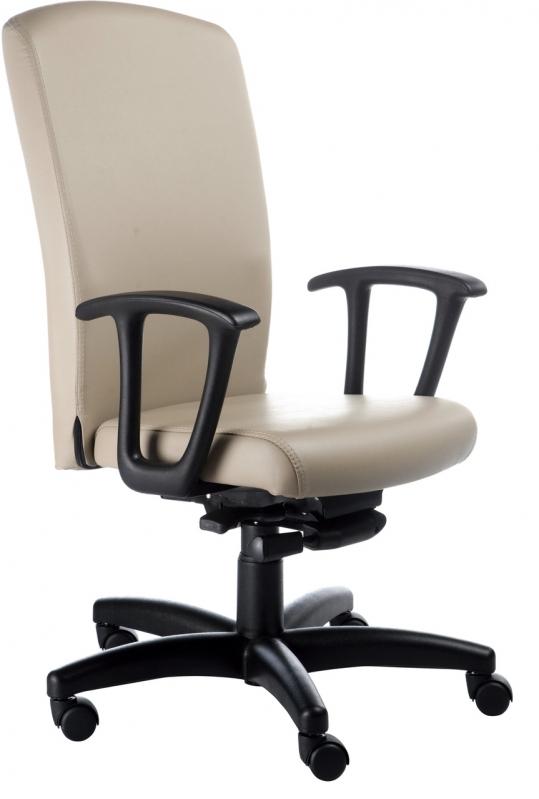 Comprar Cadeira Tipo Presidente Juquitiba - Cadeira Presidente Branca